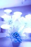 Velas azules de la flor y del té fotos de archivo