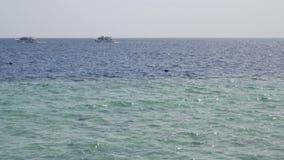Velas brancas do iate do navio na ?gua azul do mar ou do oceano video estoque