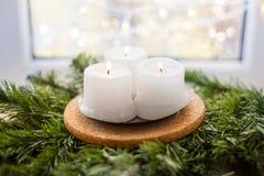 Velas de la Navidad en una rama del abeto Imagenes de archivo