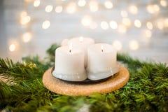 Velas de la Navidad en una rama del abeto Fotos de archivo