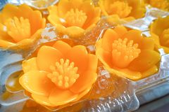 Velas de Lotus em um templo budista Fotos de Stock Royalty Free