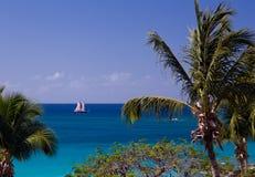 Velas del barco entre las palmeras Fotos de archivo libres de regalías