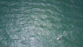 Velas del Windsurfer en el océano abierto de la turquesa metrajes