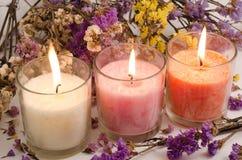 Velas e flores secadas Fotos de Stock Royalty Free