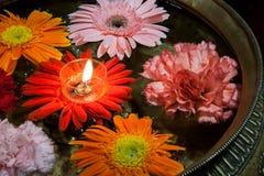 Velas flotantes de la margarita de Jinpen Imagen de archivo libre de regalías