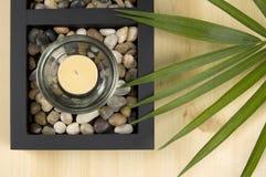 Velas perfumadas y planta verde Imágenes de archivo libres de regalías