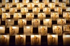 Velas que queman en la catedral famosa de Notre Dame de Paris en París Fotografía de archivo libre de regalías