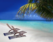 Velassaru Beach in The Maldives. Tropical Beach with pair of Chairs and blue sky in Velassaru Stock Image