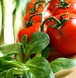Veldsla en tomaten Stock Fotografie