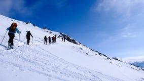 Vele backcountry skiërs die een berghelling op hun manier oversteken aan een hoge alpiene bergpiek Stock Foto's