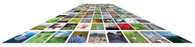 Vele Beelden tegen de Witte Achtergrond Royalty-vrije Stock Afbeeldingen