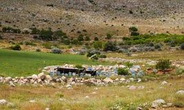 Vele bijenkorven op een heuvel in Turkije stock afbeeldingen