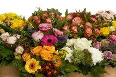 Vele Bloemen stock foto's