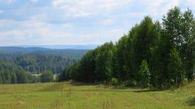 Vele bomen en bergen Stock Foto's