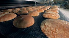 Vele broden van brood bij een bakkerij, sluiten omhoog stock footage