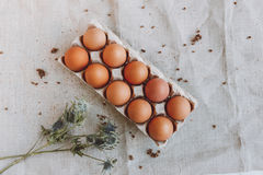 Vele bruine eieren Stock Afbeeldingen