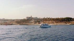 Vele dell'yacht lungo la costa video d archivio