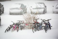 Vele die fietsen in sneeuwonweer worden geparkeerd royalty-vrije stock foto's