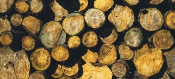 Vele die secties logboeken van brandhout in openlucht, in openlucht het concept van de zondag, vrije ruimte voor tekst, houten te stock afbeelding