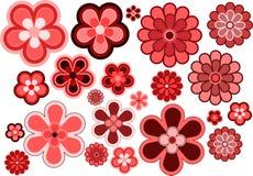 Vele diverse grootte en vormenbloemen Royalty-vrije Stock Foto
