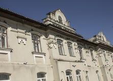 Vele duiven in een historisch gebouw Stock Foto
