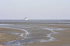 Vele eenden in Nederlandse Waddenzee dichtbij Ameland stock afbeelding