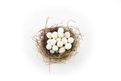 Vele eieren in één enkel nest Stock Foto