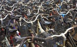 Vele fietsen 01 Stock Afbeelding