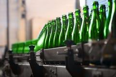 Vele flessen op transportband Stock Afbeelding