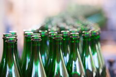 Vele flessen op transportband Royalty-vrije Stock Foto's