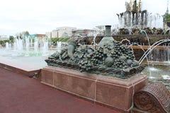 Vele fonteinen in VDNKh royalty-vrije stock afbeelding
