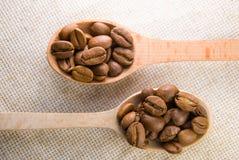 Vele geroosterde koffiebonen in de lepels Stock Afbeelding