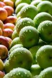 Vele Groene appelen en rood-Gele appelen Stock Afbeeldingen