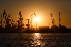 Vele grote kranen silhouetteren in de haven bij gouden die licht van zonsopgang in water wordt weerspiegeld Berdiansk, de Oekraïn stock fotografie