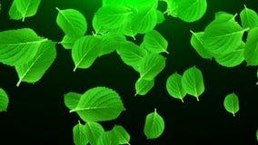 Vele heldergroene bladeren in ruimte, computer geproduceerde abstracte 3D achtergrond, geven terug Stock Foto