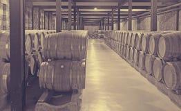 Vele houten vaten in wijnmakerij Stock Fotografie