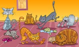 Vele katten thuis Stock Afbeelding