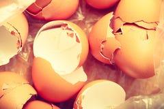 Vele lege gebarsten eierschalen Royalty-vrije Stock Afbeeldingen