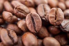 Vele macro coffe bonenclose-up op koffieachtergrond Stock Foto's
