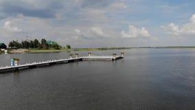 Vele meeuwen zitten op het dok, meeuwen op de pijler dichtbij een mooi hotel stock videobeelden