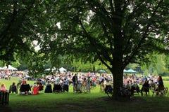 Vele mensen in het park in de stad Rotterdam in de zomer Royalty-vrije Stock Foto
