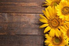 Vele mooie heldere gele zonnebloemen op een bruine houten achtergrond hoogste mening met een plaats voor inschrijving royalty-vrije stock fotografie