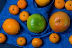 Vele mooie heldere sappige rijpe zijn de heerlijke mond-water gevende citrusvruchten zijn donkerblauw op zwart achtergrond verspr stock fotografie
