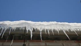 Vele mooie ijskegels hangen van het dak stock video