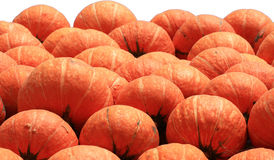 Vele oranje pompoenen royalty-vrije stock fotografie