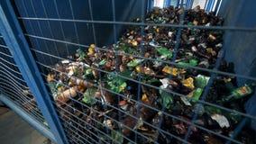 Vele plastic flessen in een container, sluiten omhoog stock video
