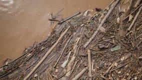 Vele plastic flessen tussen gewassen takjes en andere organische materialen royalty-vrije stock afbeelding