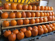 Vele pompoenen bij markt voor Halloween Royalty-vrije Stock Foto