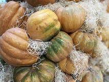 Vele pompoenen op een landbouwersmarkt stock foto's