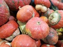 Vele pompoenen op een landbouwersmarkt stock afbeelding